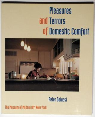 pleasures and terrors of domestic comfort essay