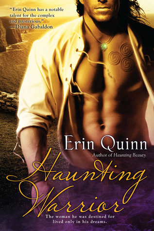 Haunting Warrior (Mists of Ireland, #2)