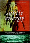 Subtle Energy: Awakening the Unseen Forces in Our Lives