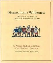 Homes in the Wilderness by William Bradford