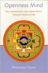 Openness Mind: Self-knowledge and Inner Peace through Meditation (Nyingma Psychology Series)