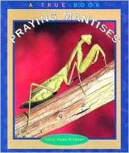 Praying Mantises by Larry Dane Brimner