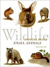 Wildlife Painting Basics: Small Animals