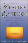 Healing Essence: A Cancer Doctor's Practical Program for Hope and Recovery