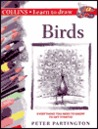 Collins Learn to Draw Birds