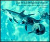 The Wild Dolphin Project: long-term research of Atlantic spotted dolphins in the Bahamas