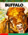 Animal Lore and Legend: Buffalo (Animal lore & legend)