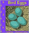 Bird Eggs (Birds) (Pebble Books)