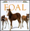 Free Download Foal (See How They Grow) PDF