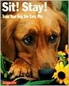 Sit! Stay! Train Your Dog the Easy Way!