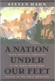 A Nation Under Our Feet: Black Political Struggles in the Rural South from Slavery to TheGreat Migration