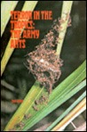 Terror in the Tropics--The Army Ants
