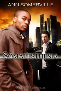 Somatesthesia by Ann Somerville