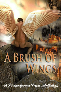 A Brush of Wings by Anne Regan