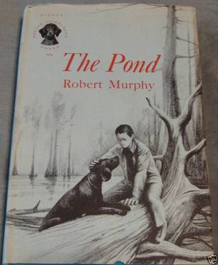 The Pond by Robert Murphy