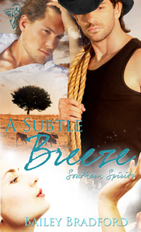 A Subtle Breeze by Bailey Bradford