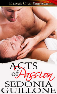 Acts of Passion by Sedonia Guillone