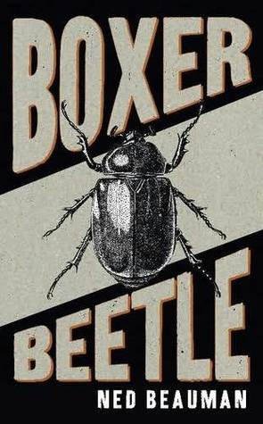 Boxer, Beetle