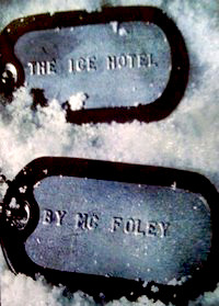 The Ice Hotel by M.C. Foley