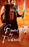 Bound by Darkness (Paladins of Darkness, #7)