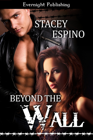 Beyond The Wall by Stacey Espino