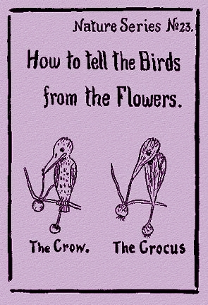 Download How to Tell the Birds from the Flowers by Robert Williams Wood iBook
