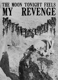 The Moon Tonight Feels My Revenge by Matthew Simmons