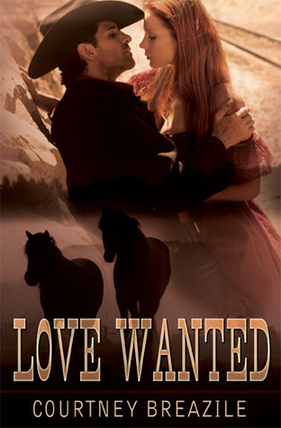Love Wanted