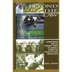 Beyond the Law by David J. Wolfson