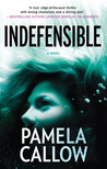 Indefensible (Kate Lange, #2)