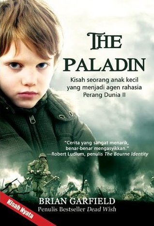 The Paladin by Brian Garfield