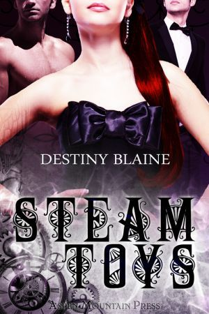 Steam Toys by Destiny Blaine