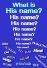 What Is His Name? by Ahmed Deedat