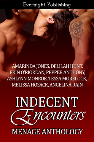Indecent Encounters by Amarinda Jones