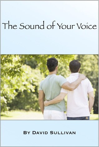 The Sound of Your Voice by David  Sullivan