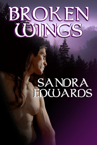 Broken Wings by Sandra Edwards