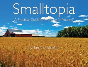 Smalltopia: A practical guide to working for yourself