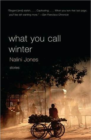 What You Call Winter by Nalini Jones