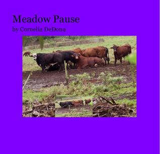 Meadow Pause