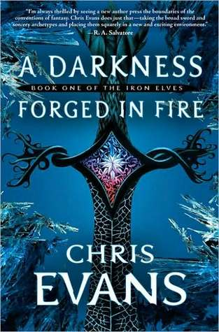 A Darkness Forged in Fire by Chris  Evans
