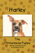 Harley, The Throwaway Puppy by Elisabeth Davis