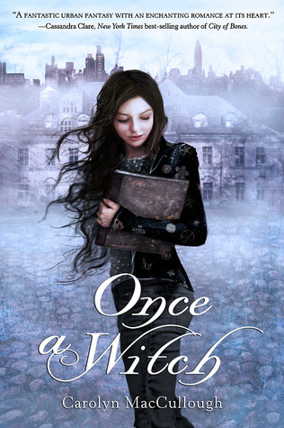 Once a Witch (Witch, #1)