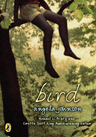 Bird by Angela Johnson