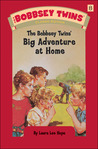 The Bobbsey Twins' Big Adventure at Home (The Bobbsey Twins #8)