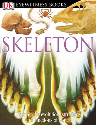 Skeleton by Steve Parker
