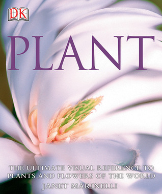 Plant by Janet Marinelli
