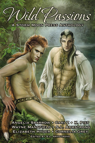 Wild Passions by S.L. Armstrong