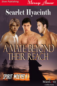 A Mate Beyond Their Reach by Scarlet Hyacinth