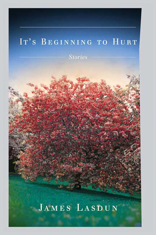 It's Beginning to Hurt by James Lasdun
