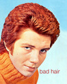 Bad Hair (Hardcover)